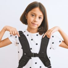 SLB_114 H Harness